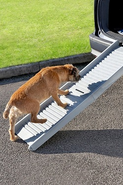 Portable Folding Pet Ramp