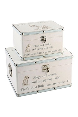 Little Boys Set Of 2 Storage Boxes