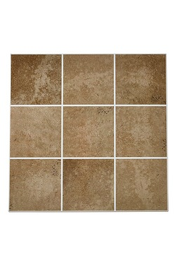 Pack Of 6 Splash Back Tile Transfers