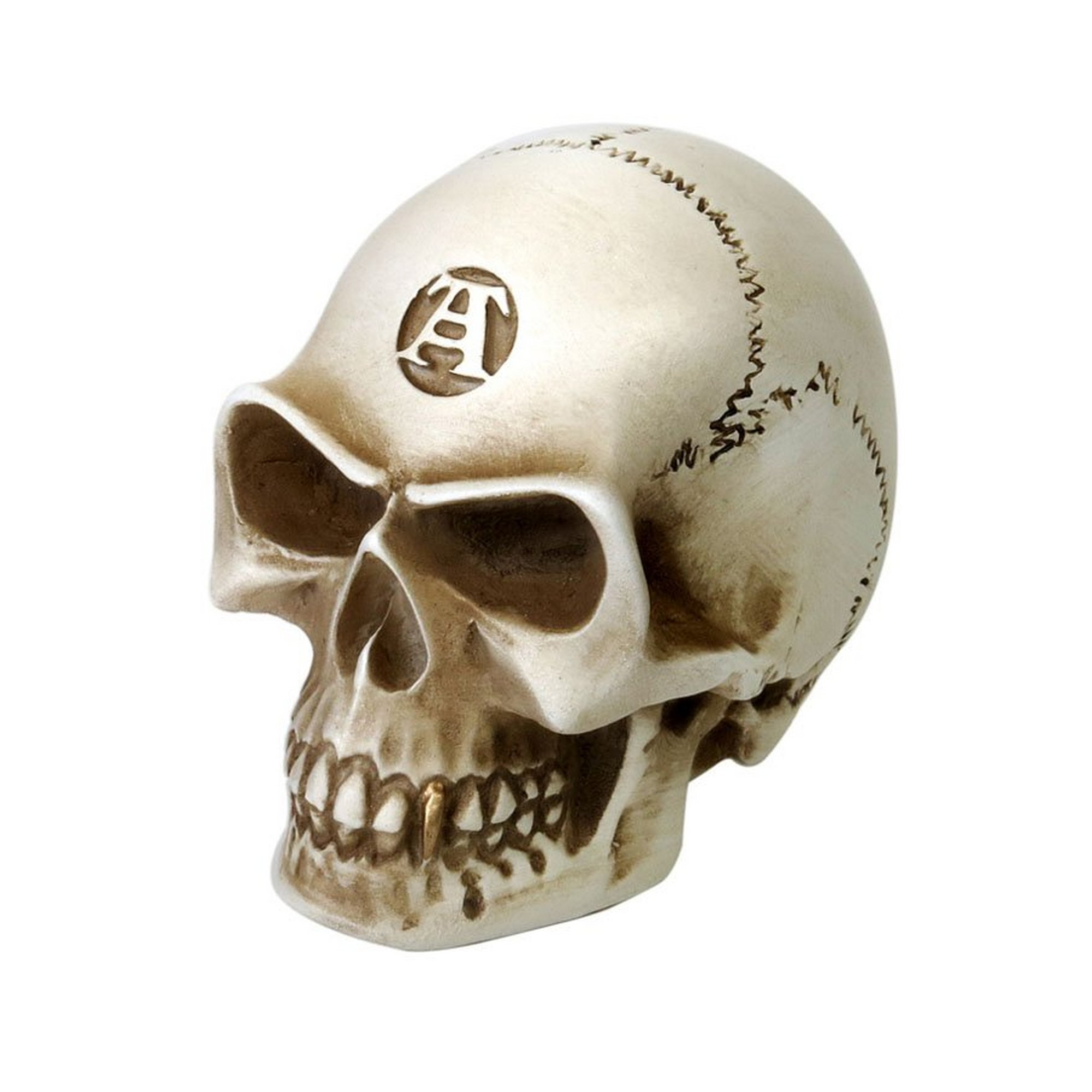 Image of Alchemist Bone Gear Knob/Model
