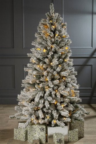 Frosted Pre-Lit Silverton Pine Christmas Tree | Studio