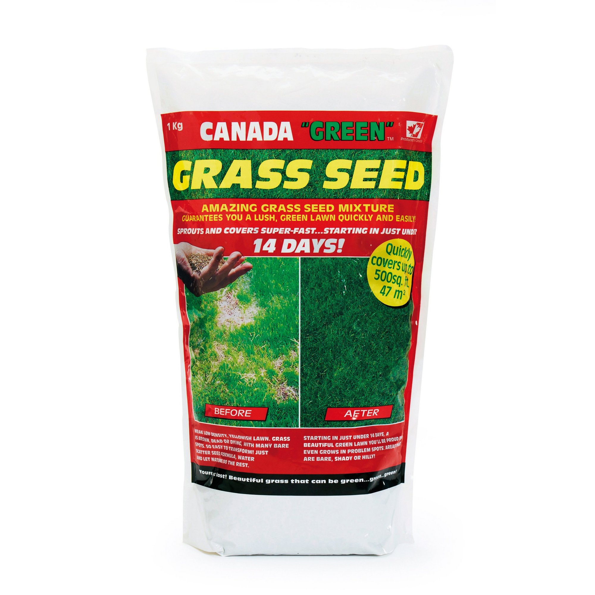 Image of Canada Green 1Kg Pack Grass Seed
