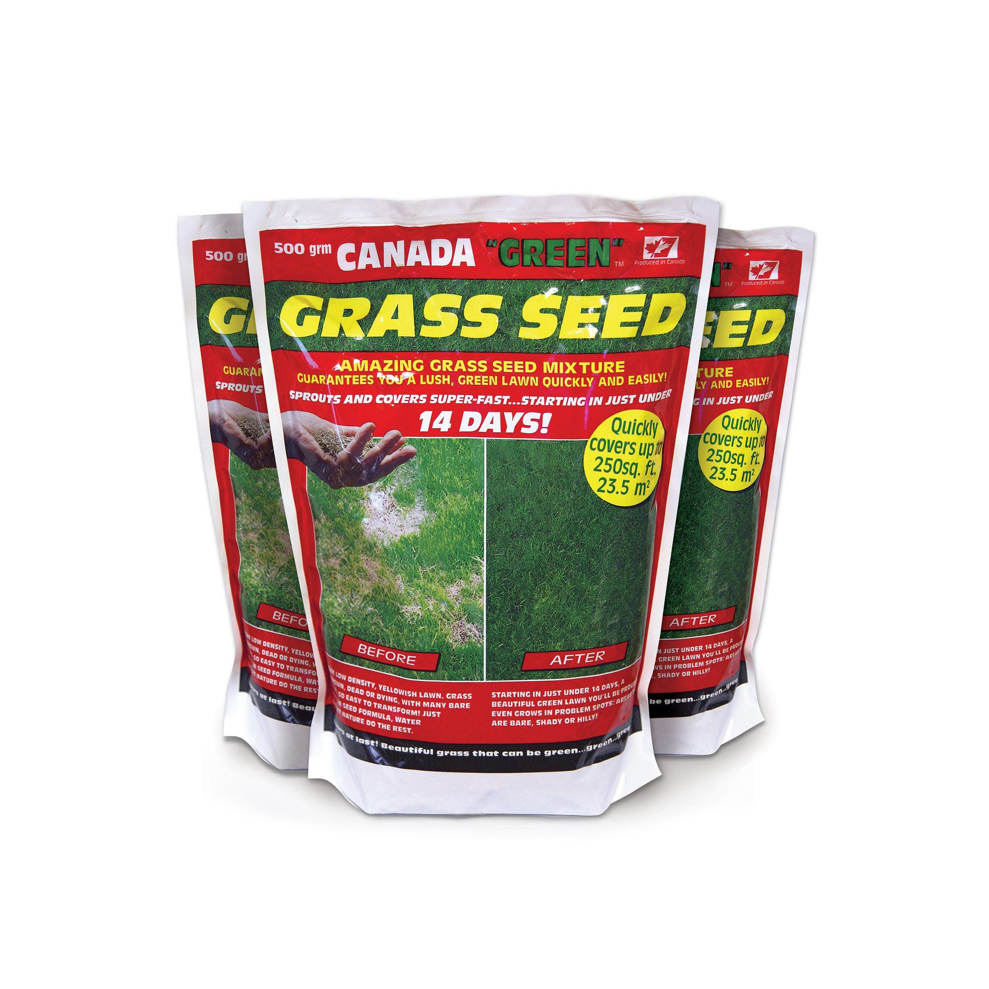 Image of Canada Green 500g Pack Grass Seed - Buy 2 Get 1 FREE