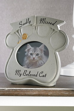 Picture Frame - Cat