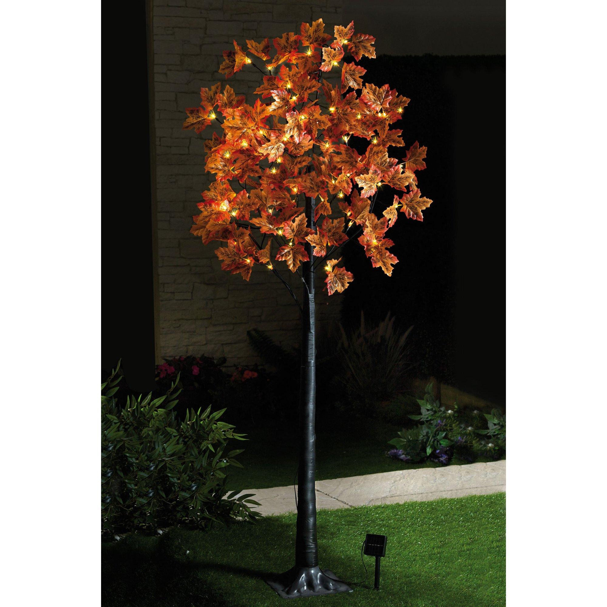 Image of 6ft Solar Maple Leaf Tree
