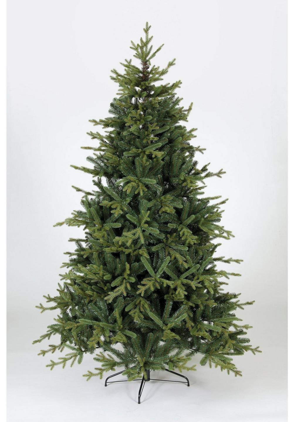 Norway Spruce Christmas Tree | Studio