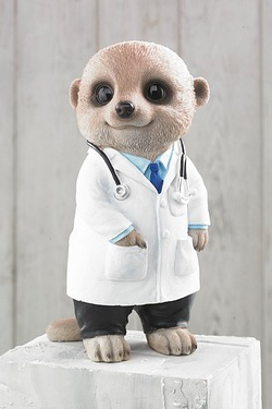 Meerkat Collectables - Doctor