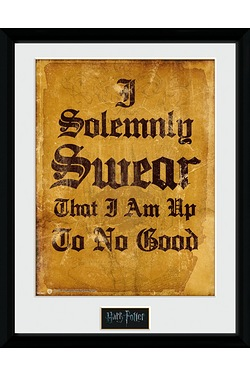 Harry Potter I Solemnly Swear Collectors Print