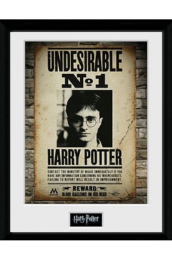 Harry Potter Undesirable No 1 Collectors Print