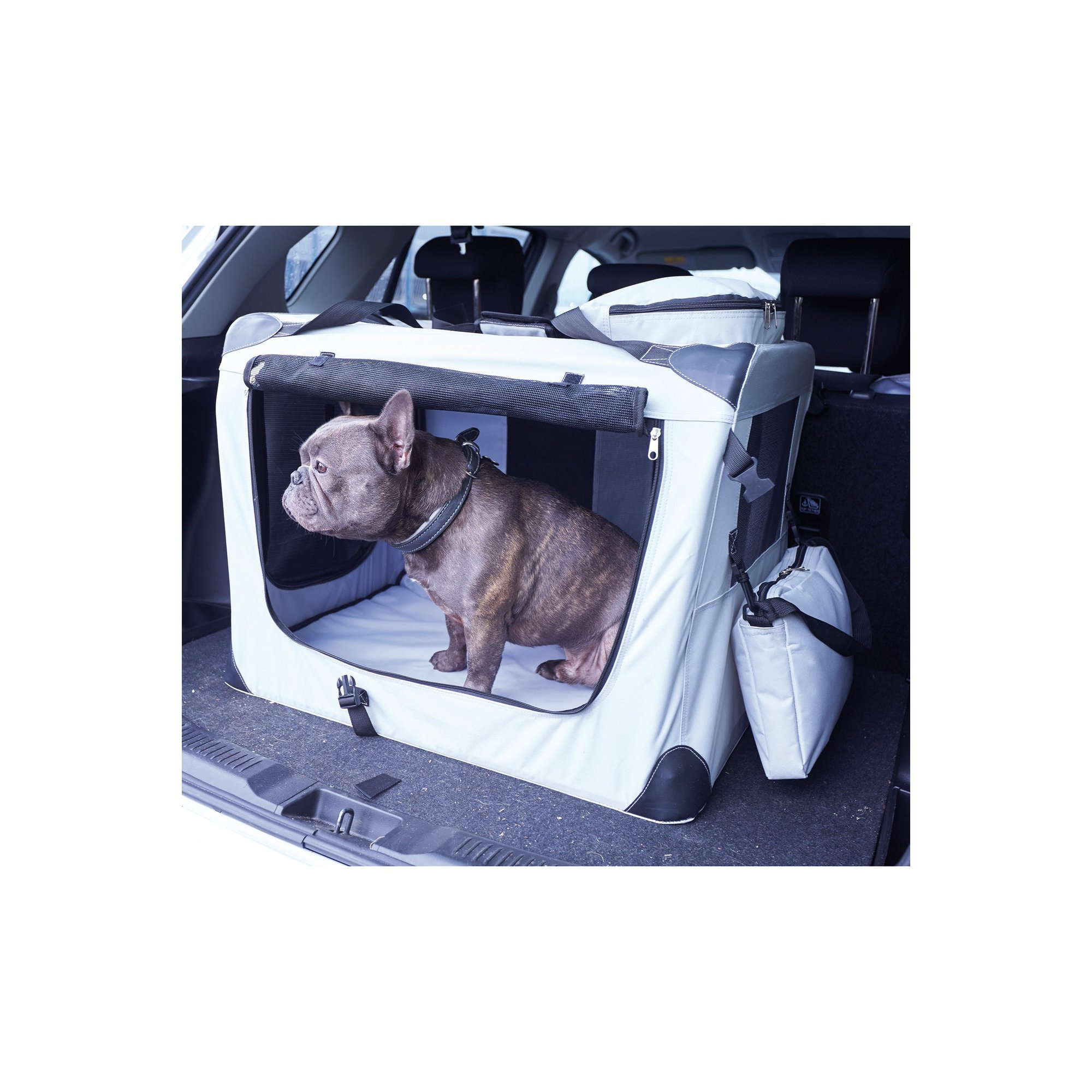 Image of Pet Carrier Crate