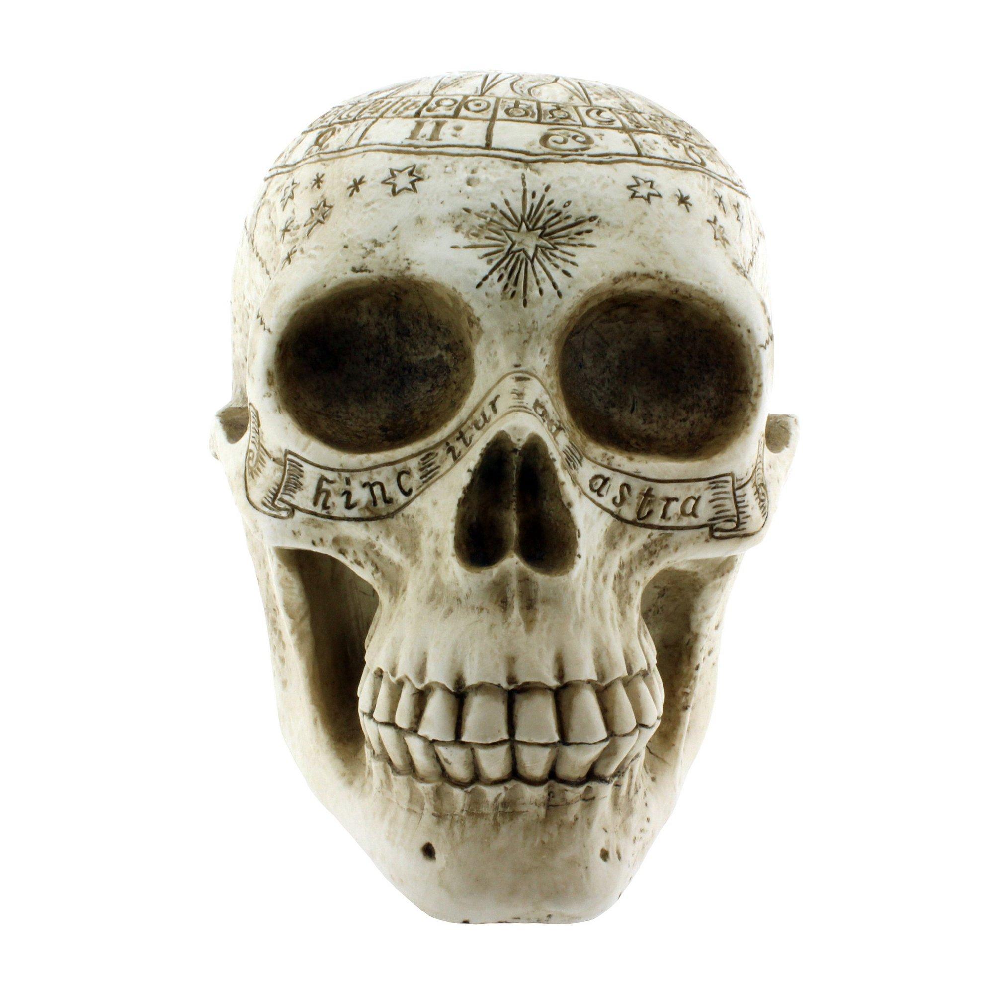 Image of Astrological Skull Figurine