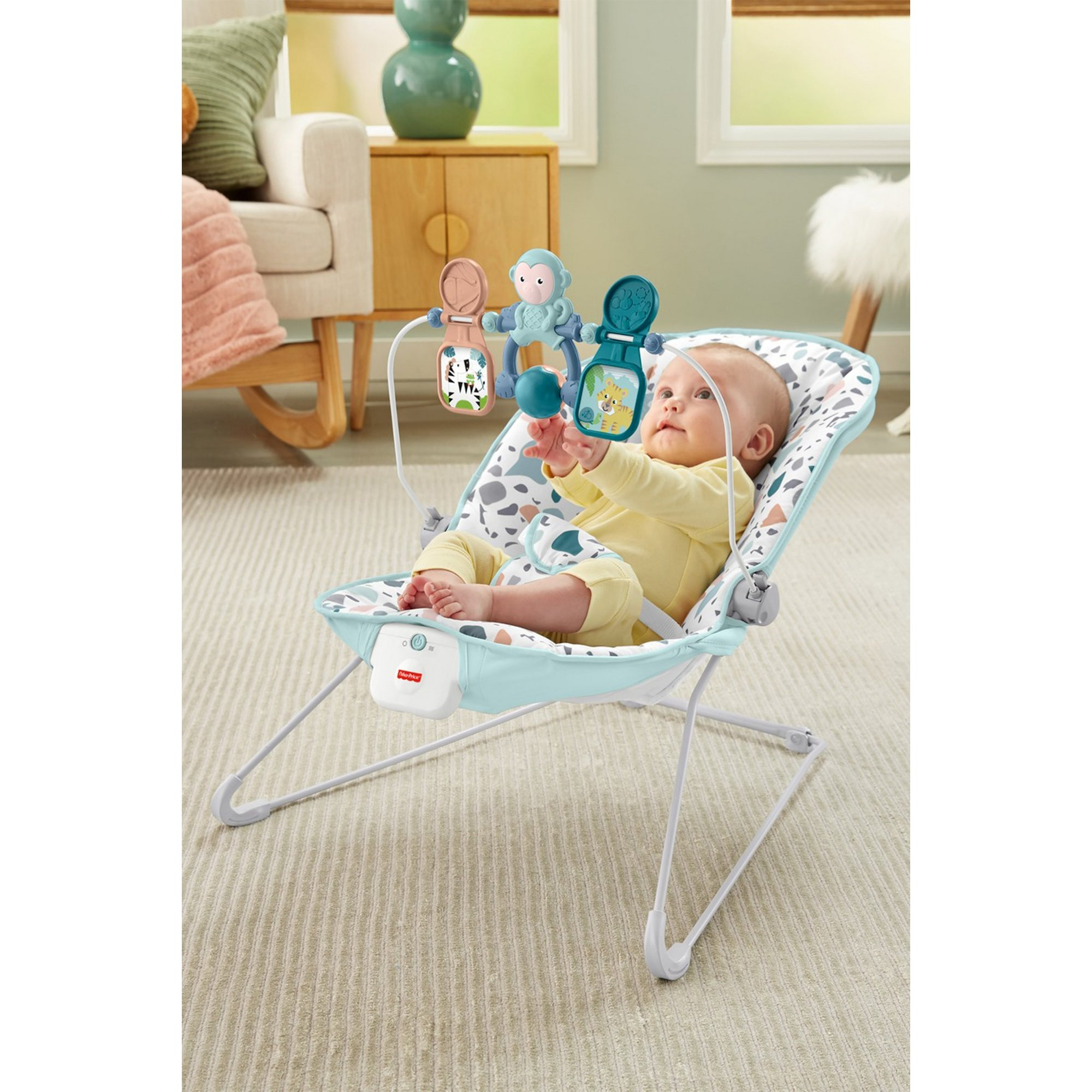Image of Fisher-Price Babys Bouncer