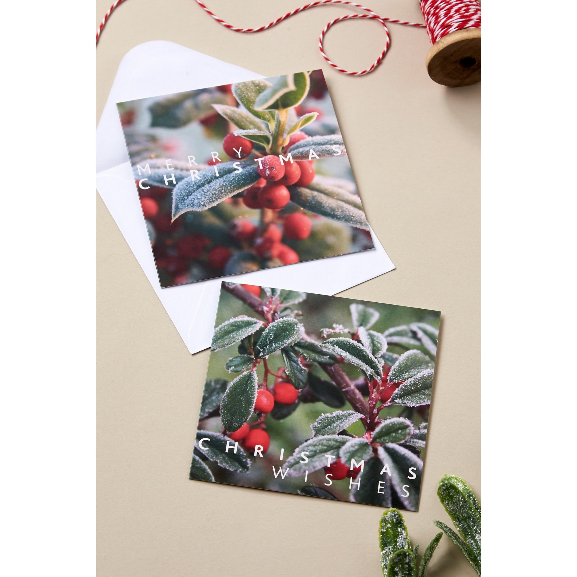 Image of Pack of 10 Frosted Berries Christmas Cards