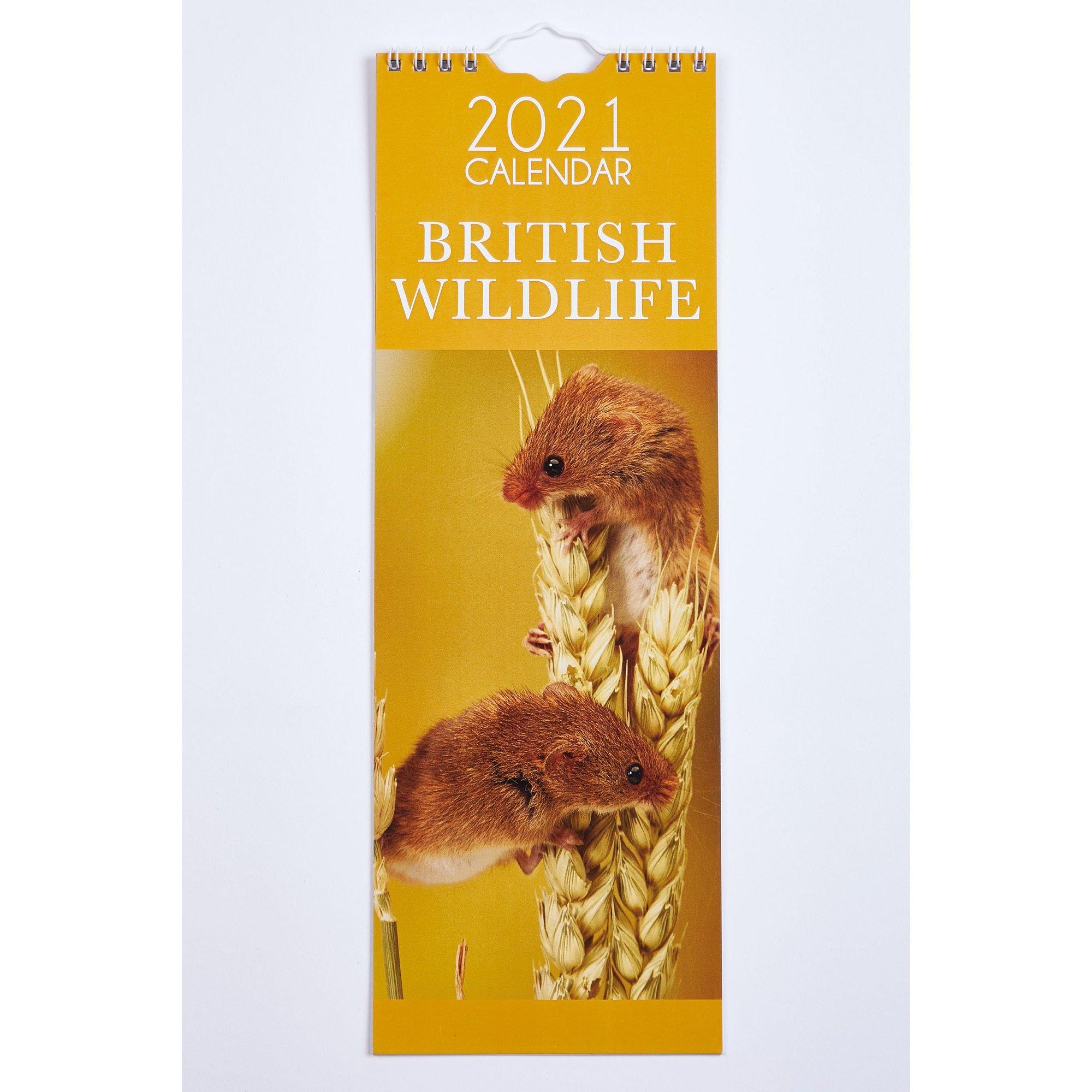 Image of Slim British Wildlife Calendar 2021
