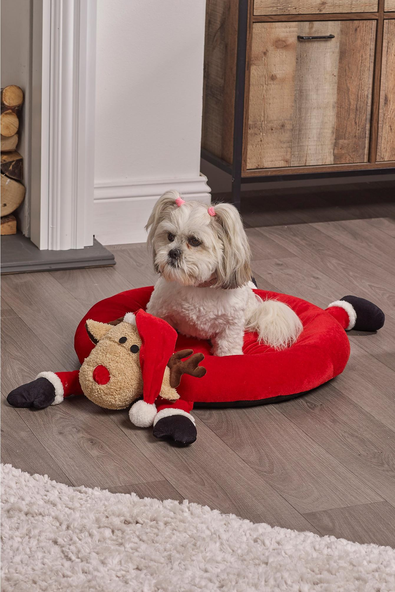 dog sitting on a reindeer themed bed