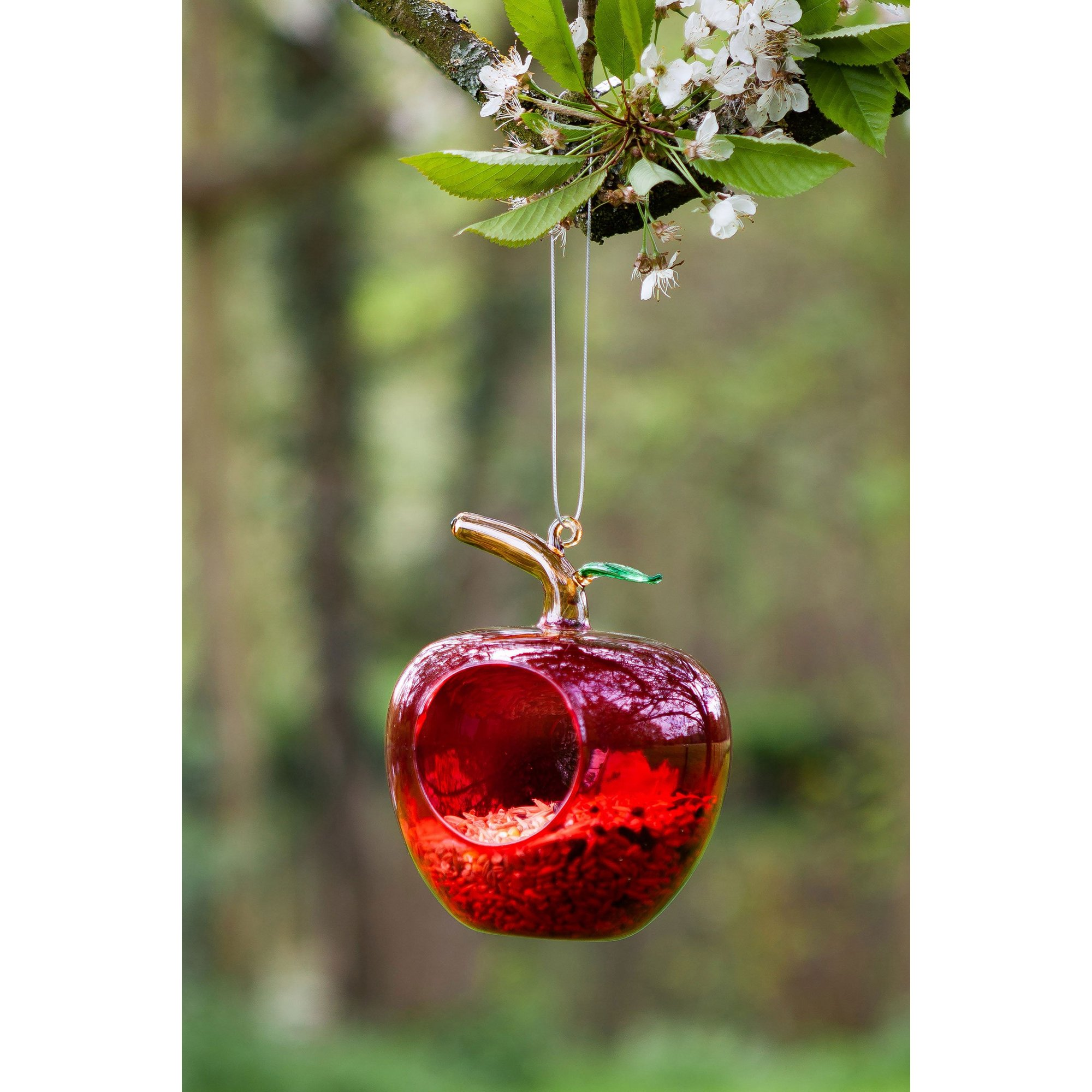 Image of Hanging Glass Apple Bird Feeder Twin Pack