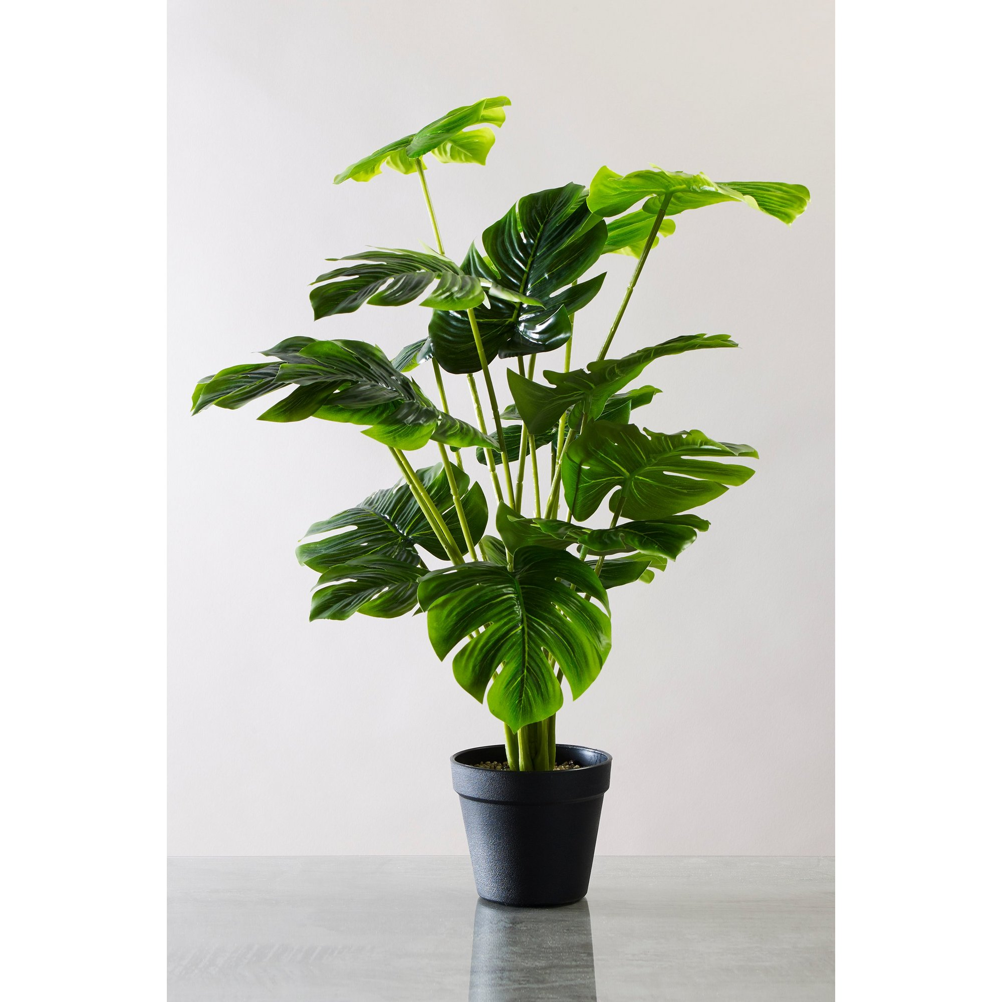 Image of Artificial Cheese Plant