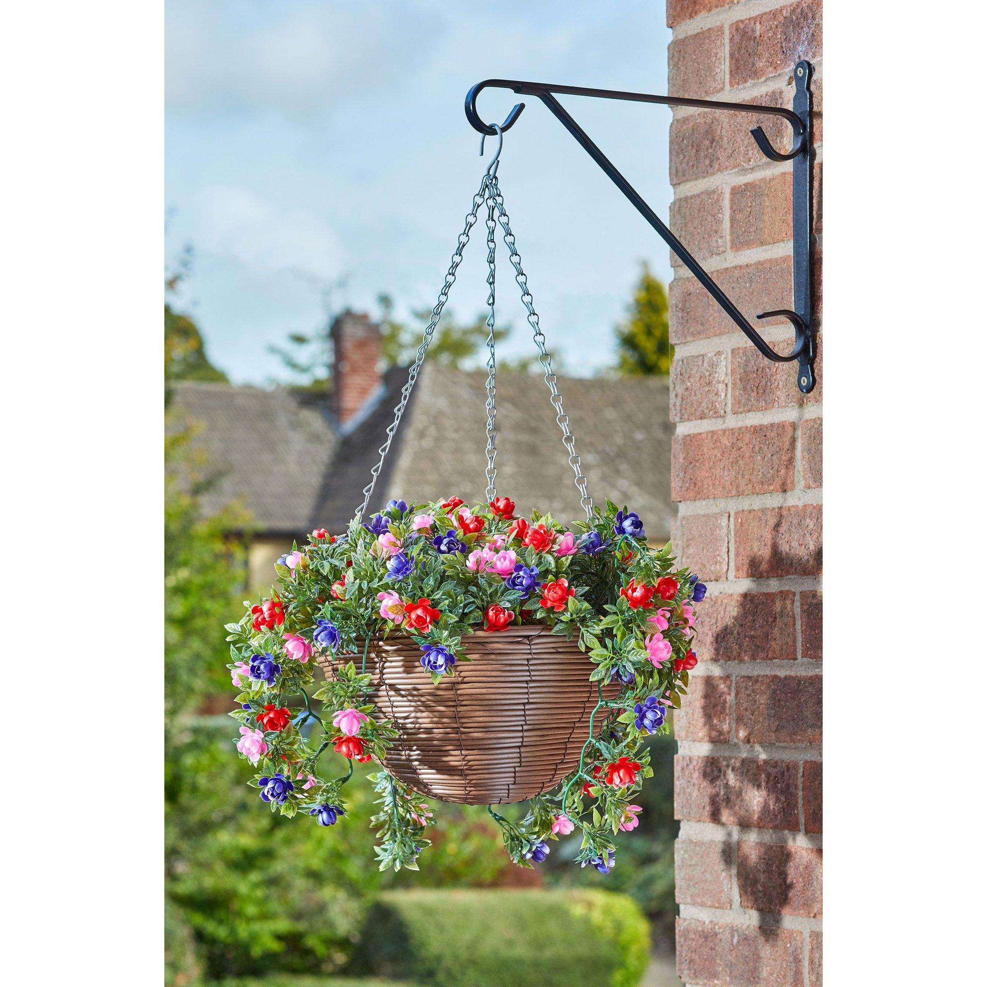 Image of Bizzie Lizzie Hanging Basket