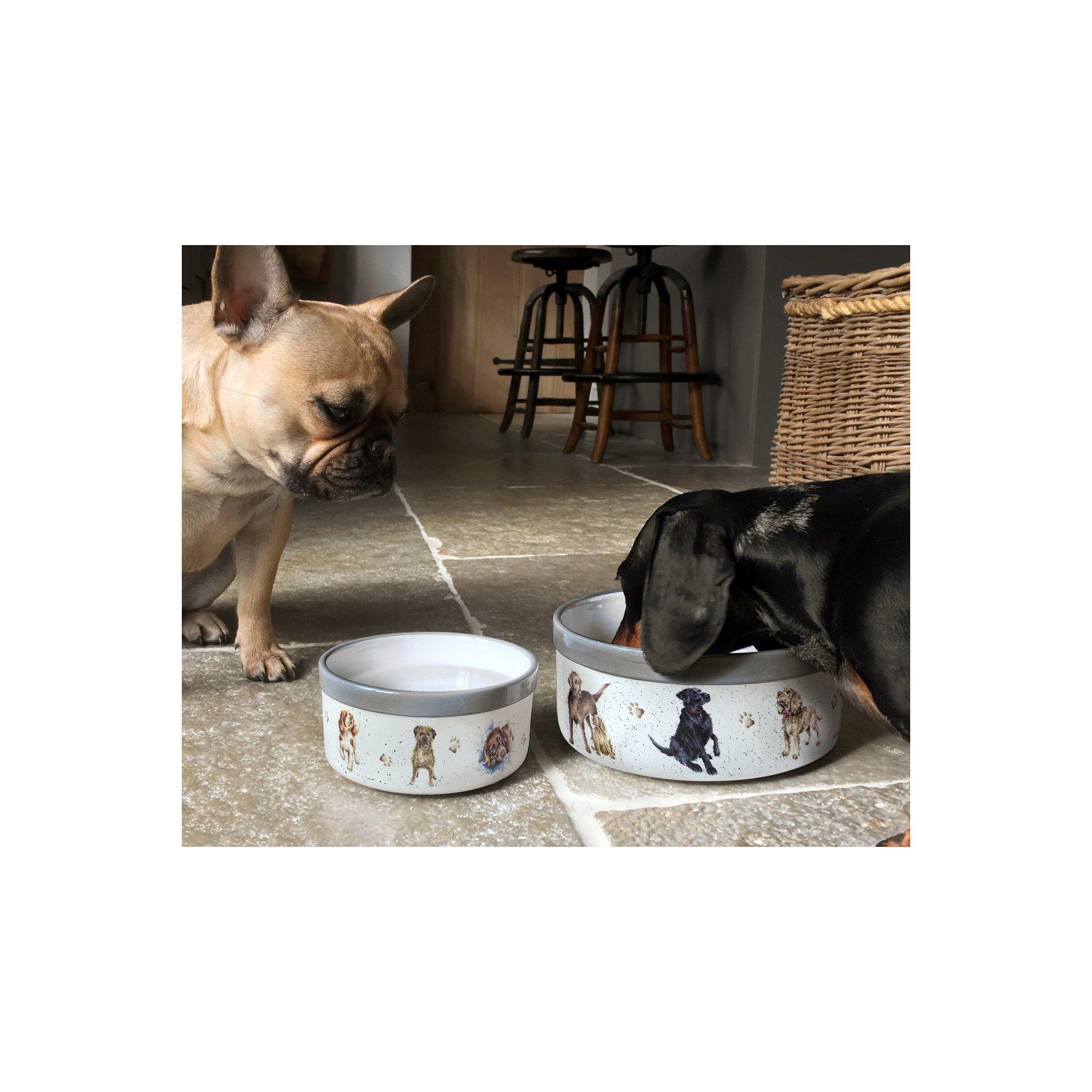 Image of Royal Worcester Wrendale Pet Bowl 6 Inch
