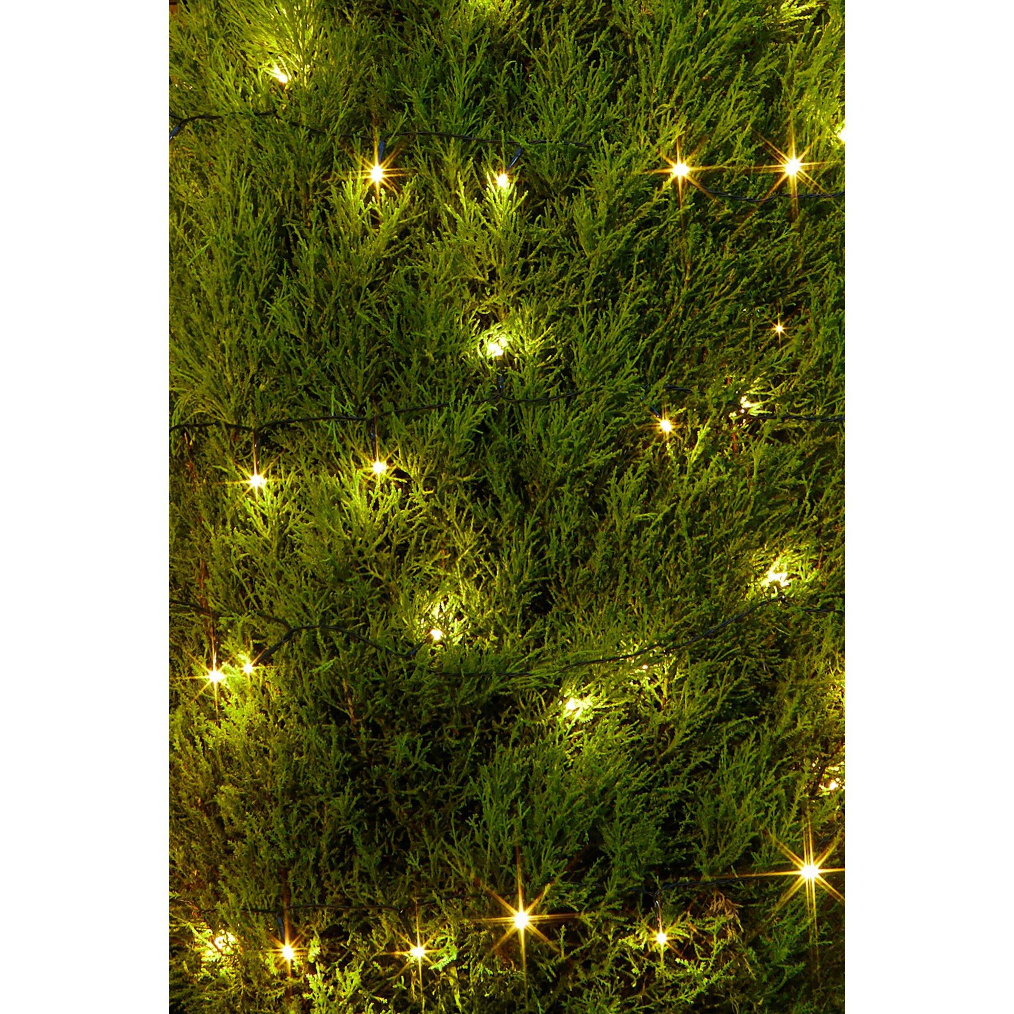 Image of 100 Warm White LED String Lights