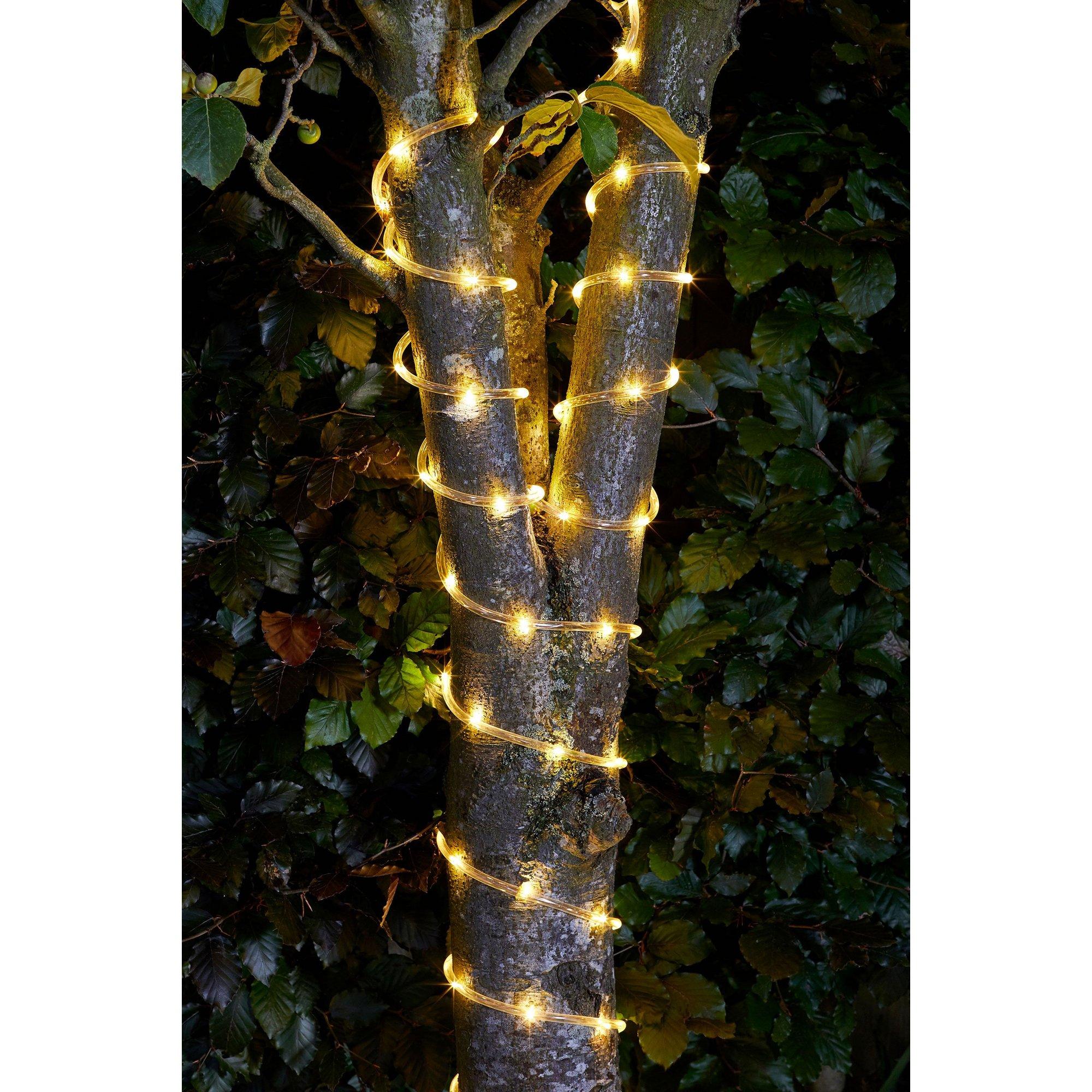 Image of 100 LED Rope Light