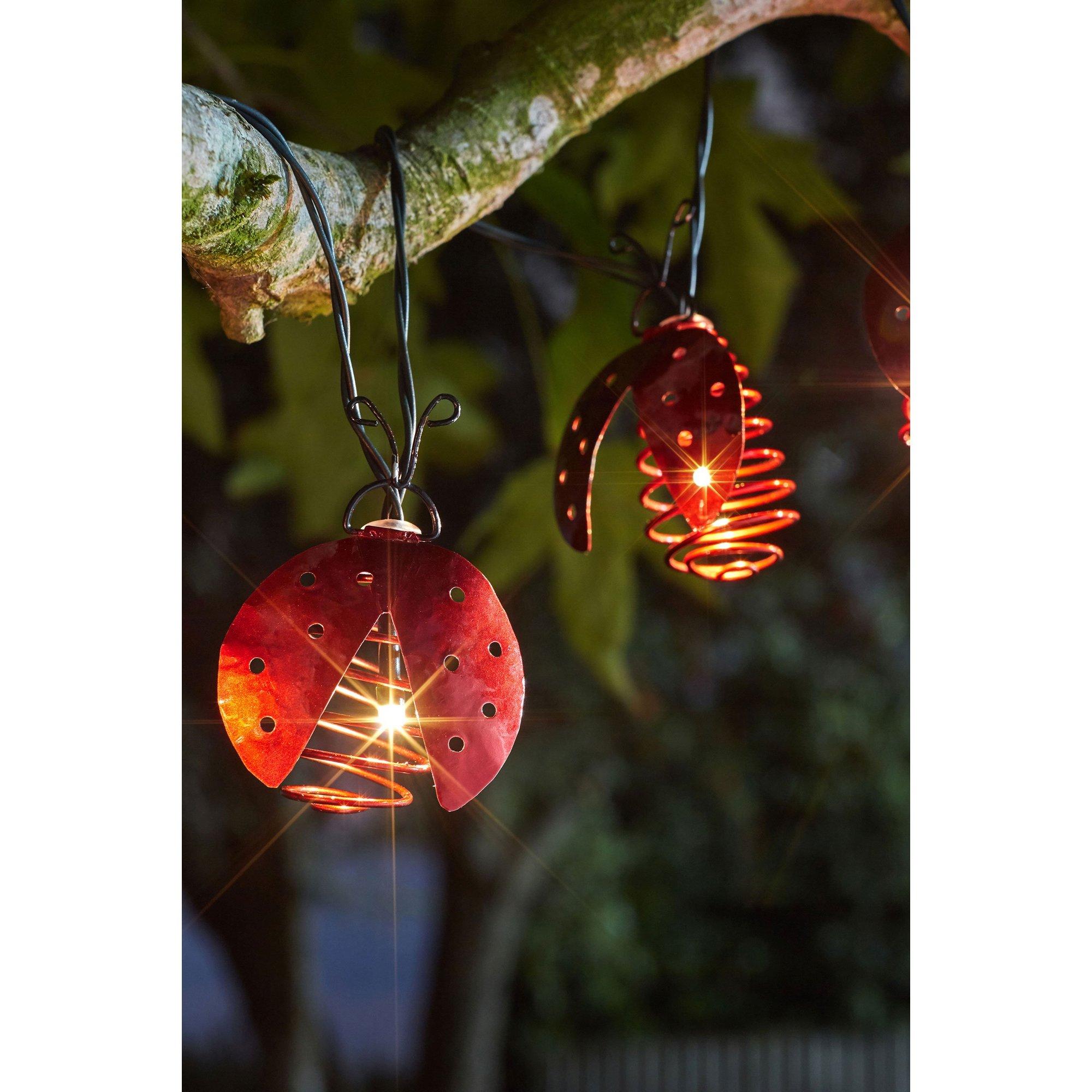 Image of 10 Ladybird Lights