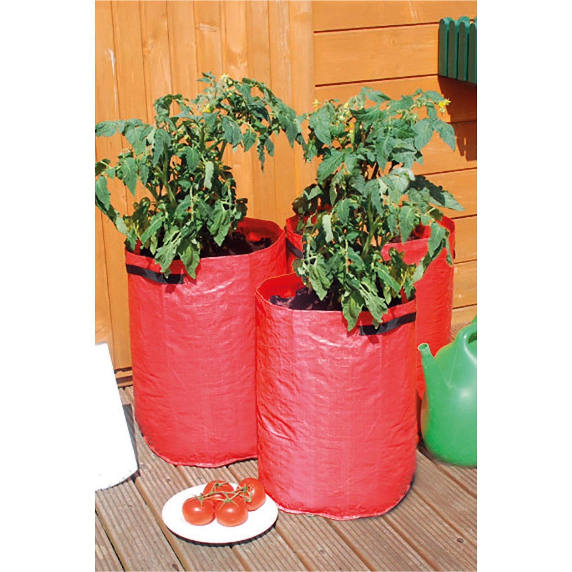 Image of 3 Tomato Grow Bags