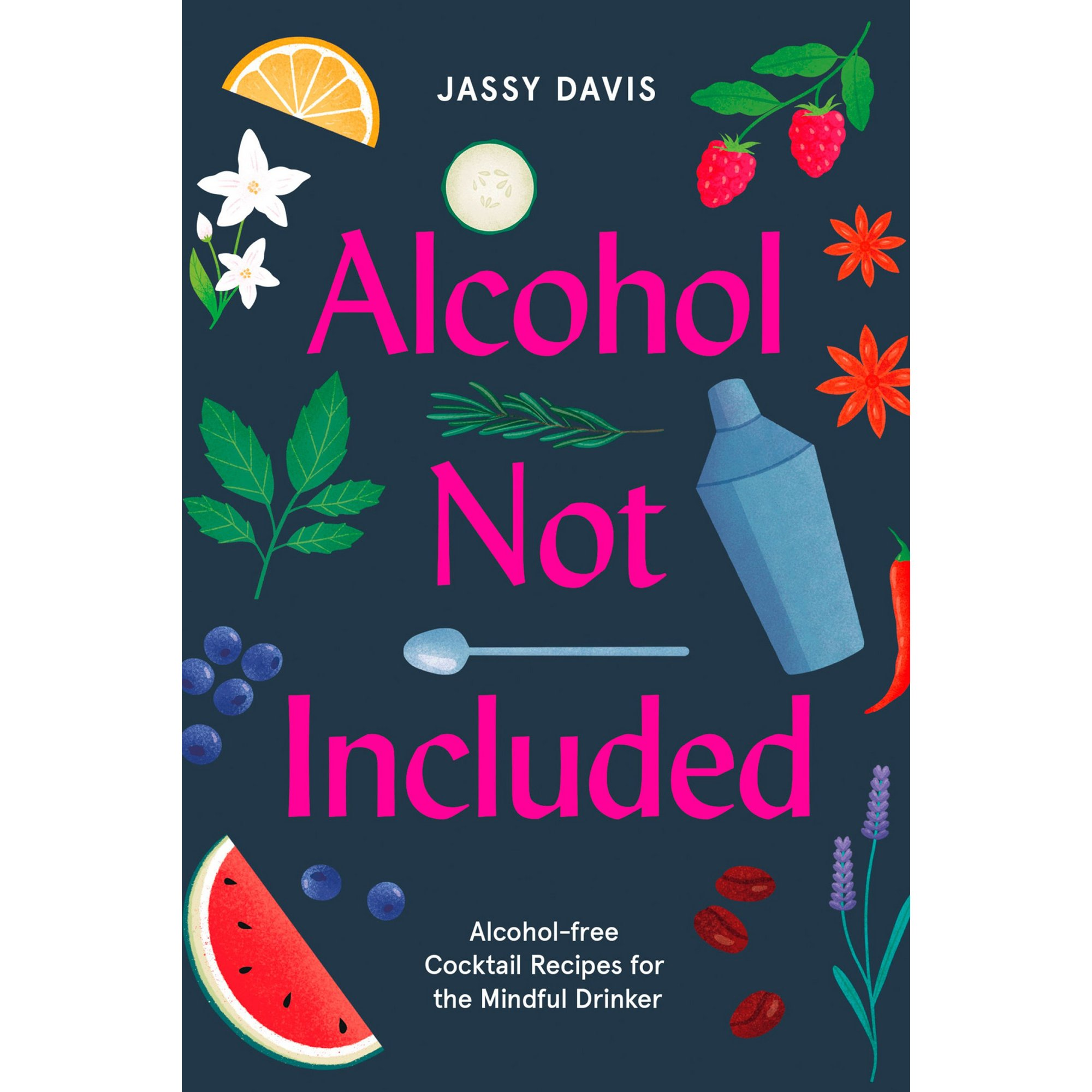 Image of Alcohol Not Included Recipe Book