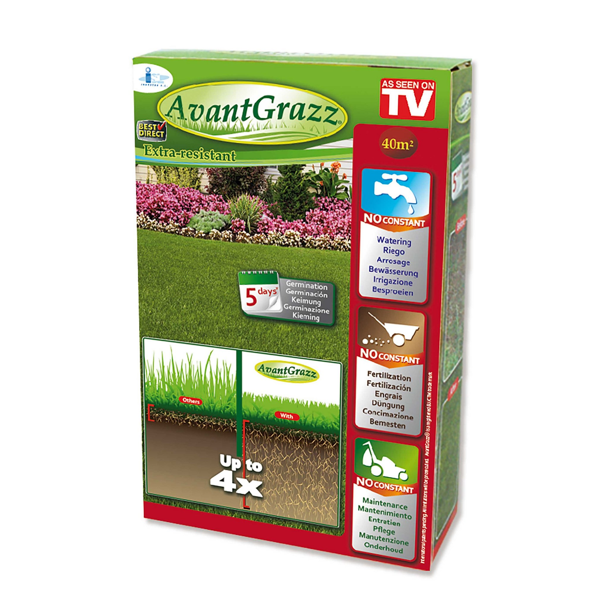 Image of Avant Grazz Lawn Seed