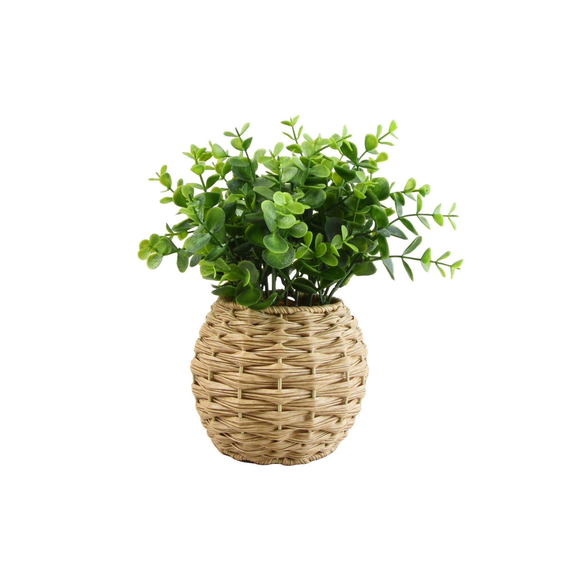 Image of Herbs in Rattan Pot