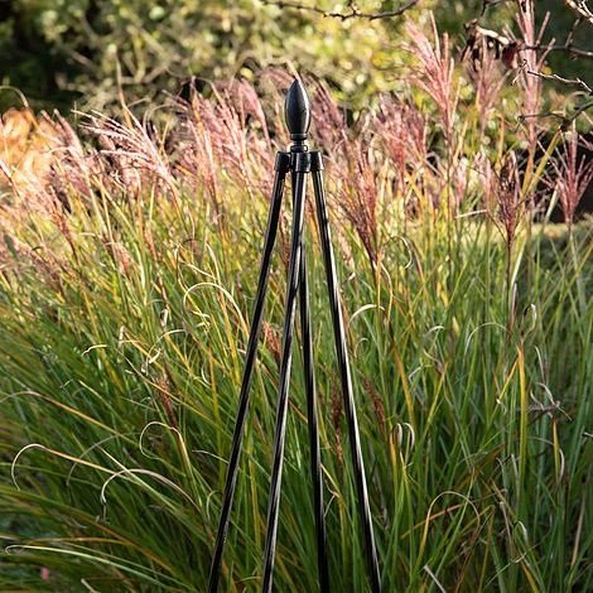 Image of 1.8m Garden Tepee Trellis