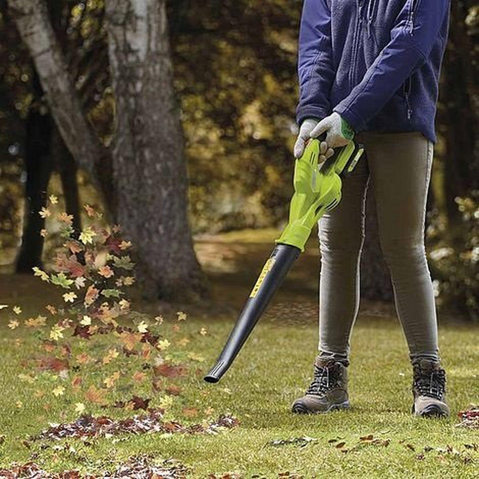 Image of 20v Leaf Blower