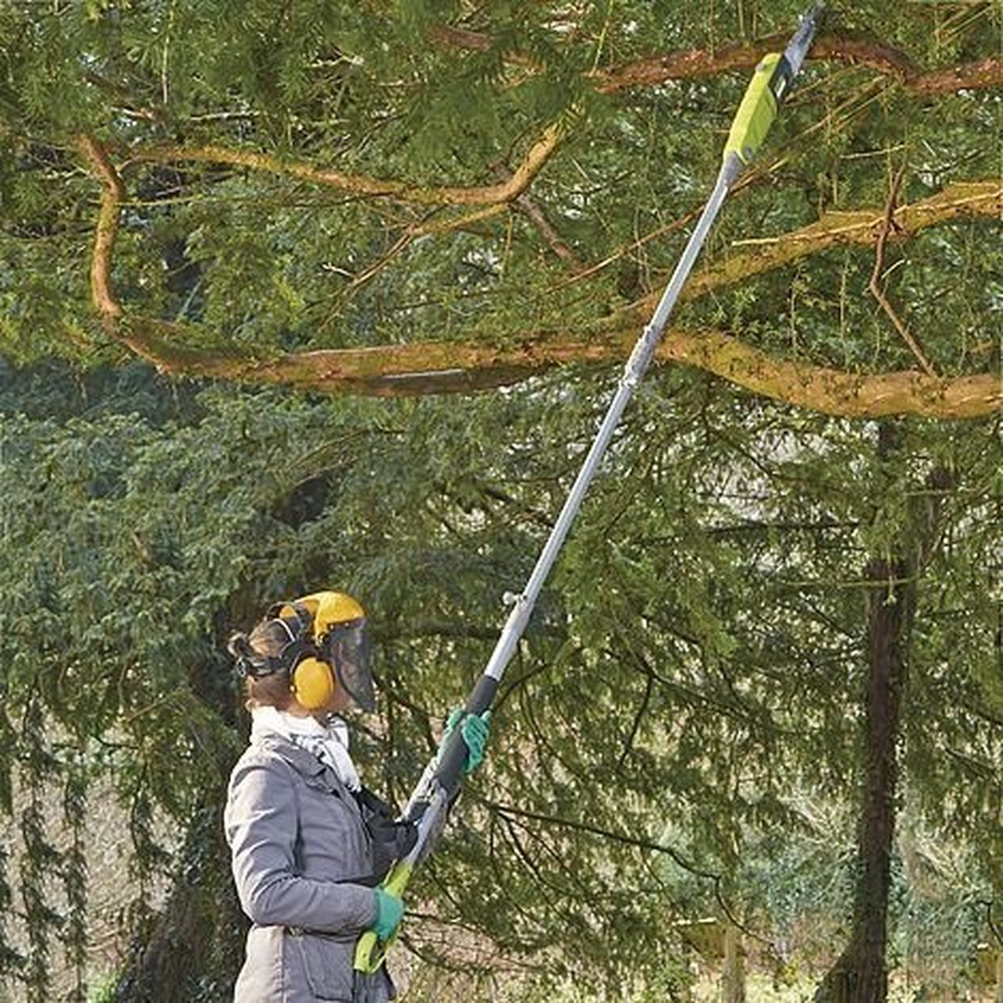 Image of Corded Pole Chainsaw