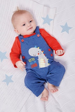 Baby Boys Dino Dungaree Set