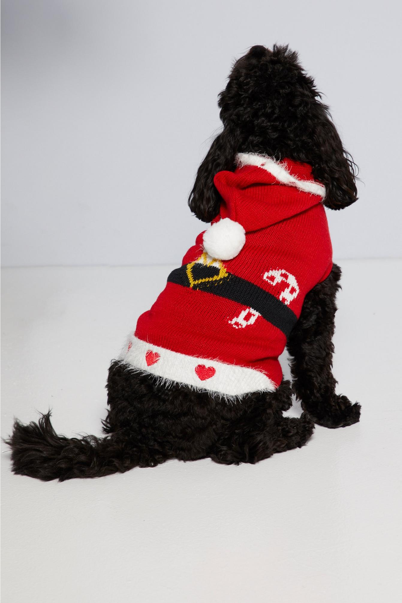 Dog wearing a xmas jumper with a hood