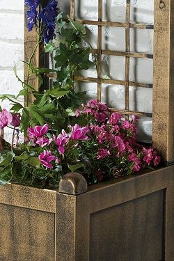Wide Trellis Planter