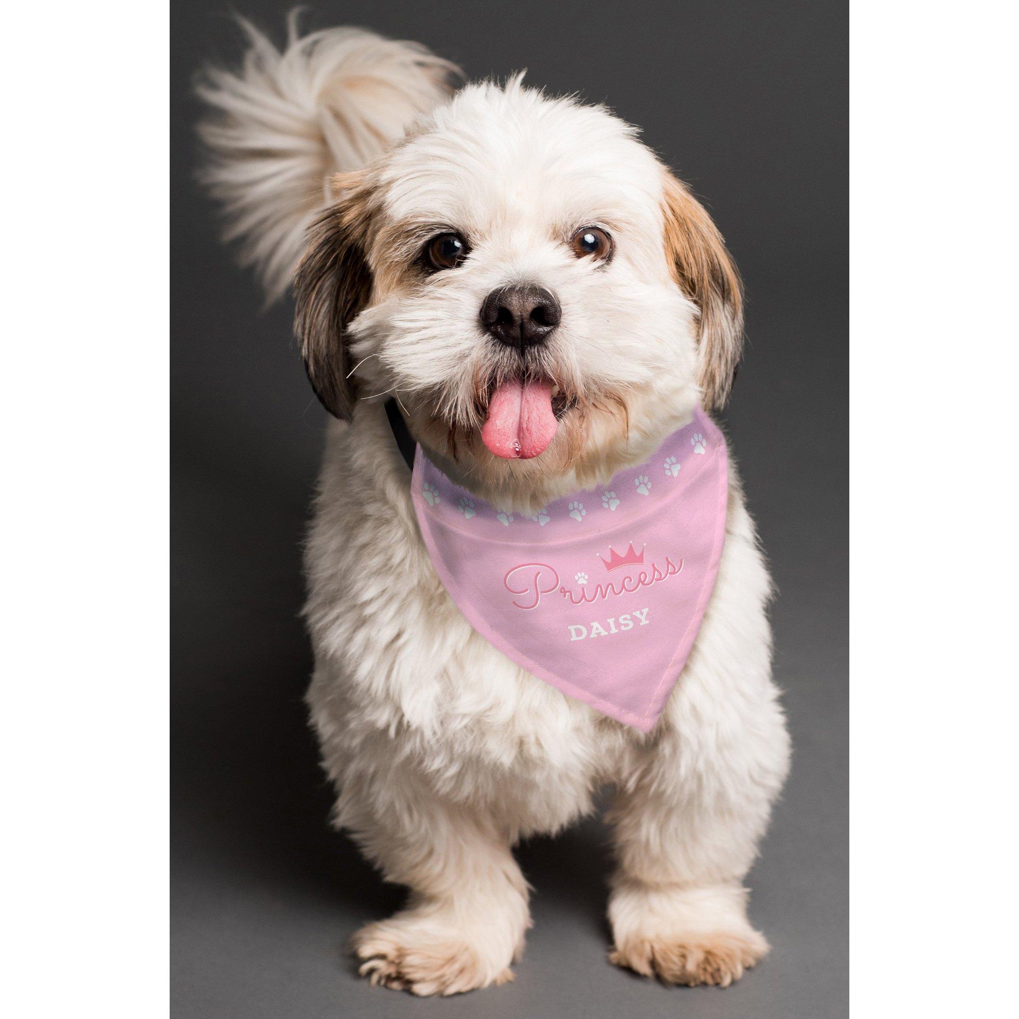 Image of Personalised Princess Dog Bandana