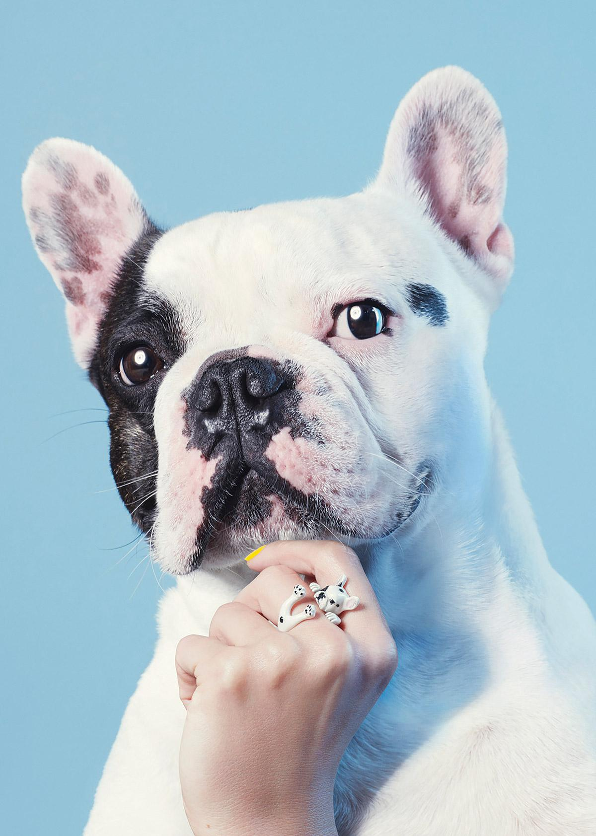 French Bulldog Hug Ring