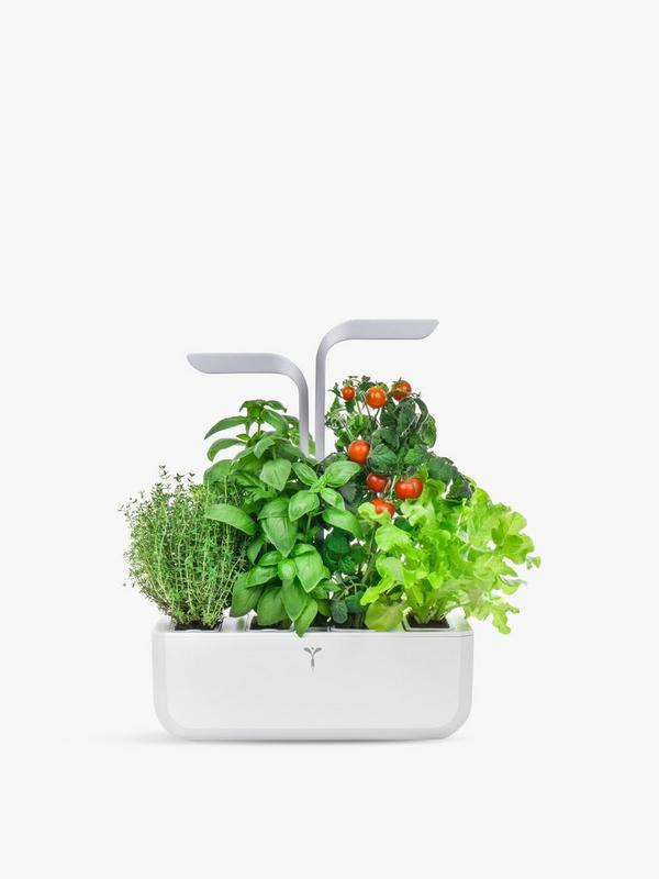 Haus SMART Veritable Garden