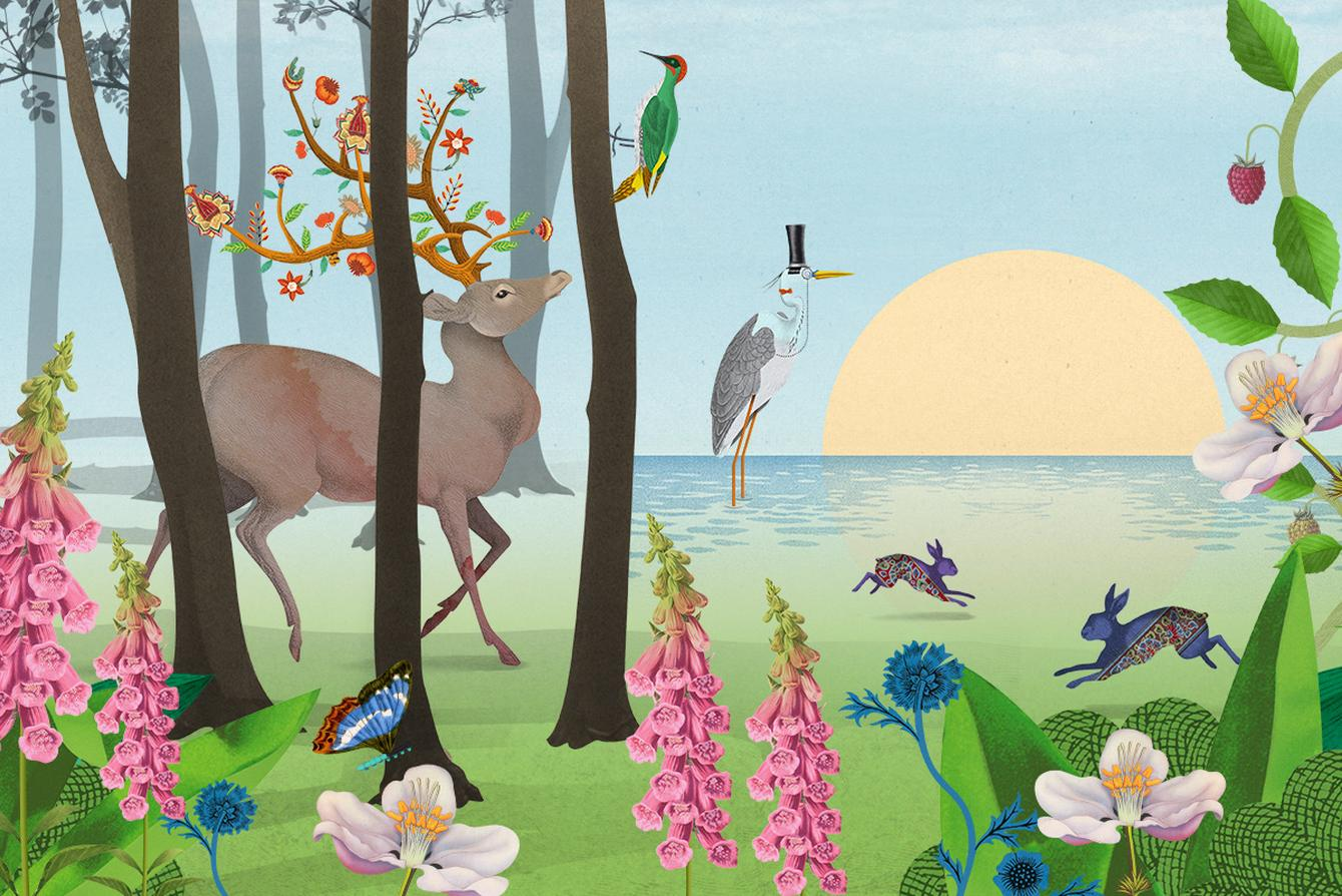 An illustrated woodland scene with animals