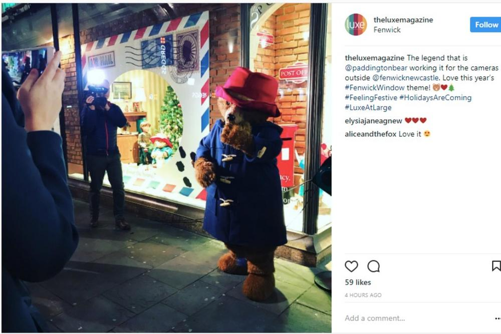 Paddington Bear Newcastle Window Instagram