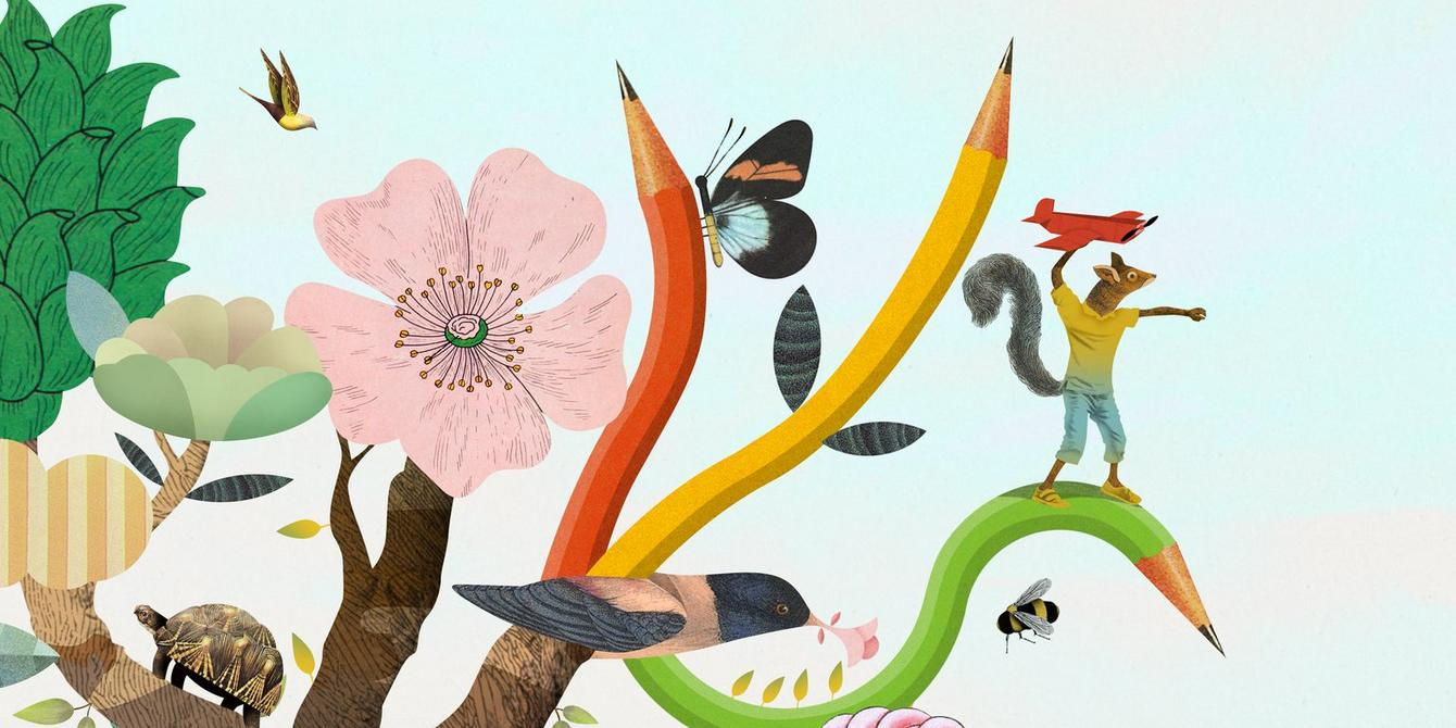 illustration of tree, colouring pencils & animals