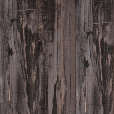 Fossil Forrest Laminate