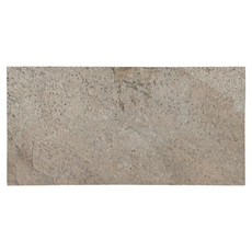 Platinum Gray Natural Quartzite Tile
