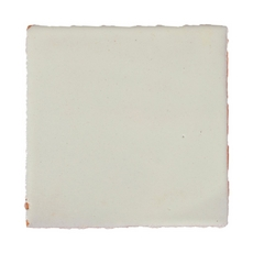 Hand-Painted White Talavera Tile (Pattern RT4BM)