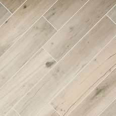 Birch Forest Gray Wood Plank Porcelain Tile
