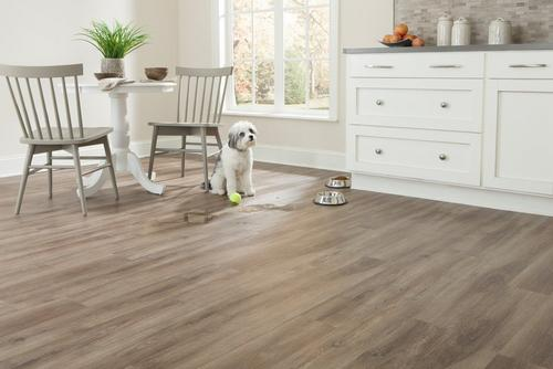 nucore cheyenne plank with cork back - 6.5mm - 100109842 | floor