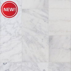 New! Classic Bianco Marble Tile