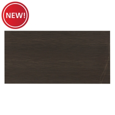 New! Mountain Black Polished Quartzite Tile
