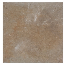 Andes Natural Quartzite Tile